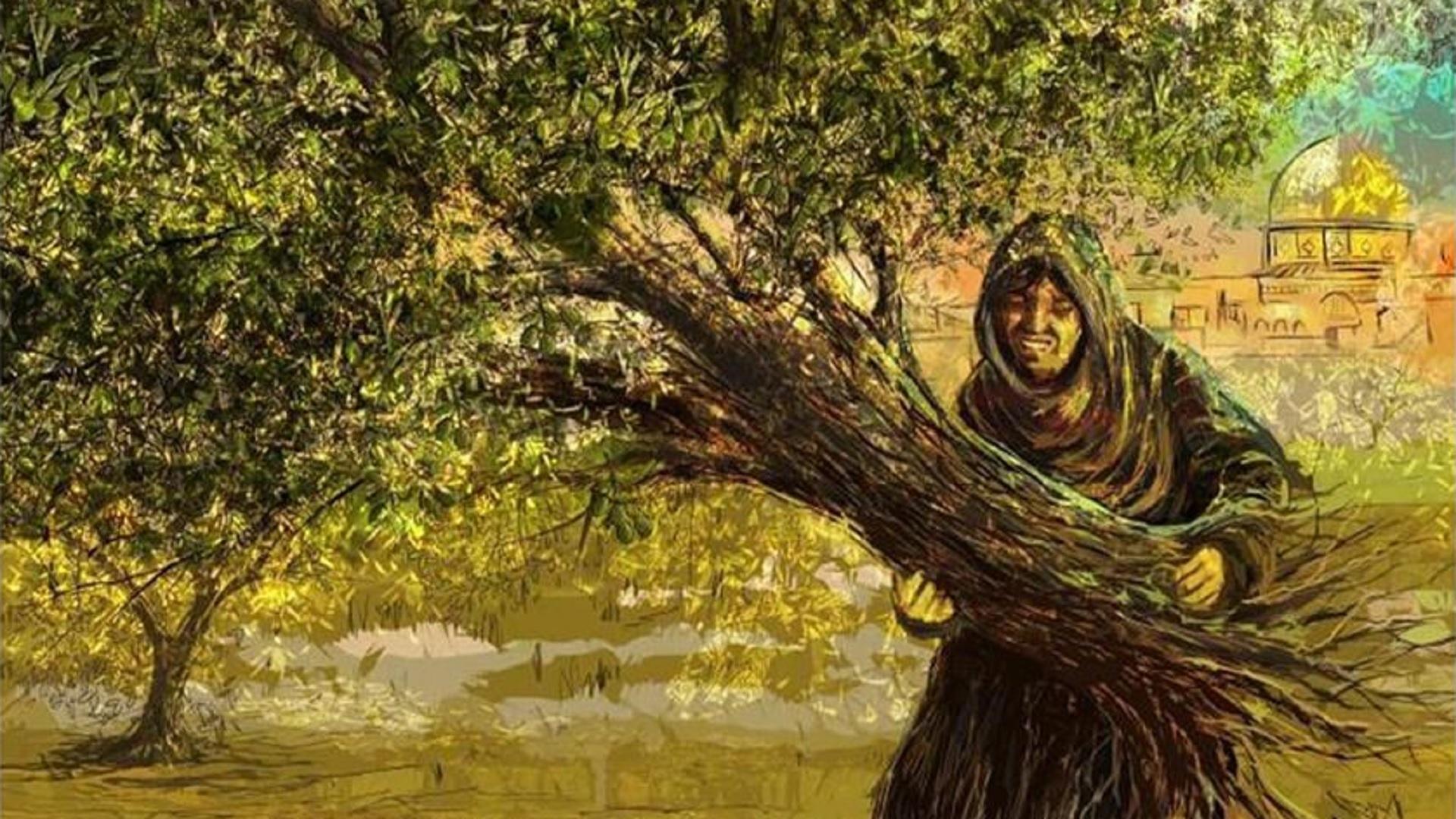من المعرض، عمر البدور