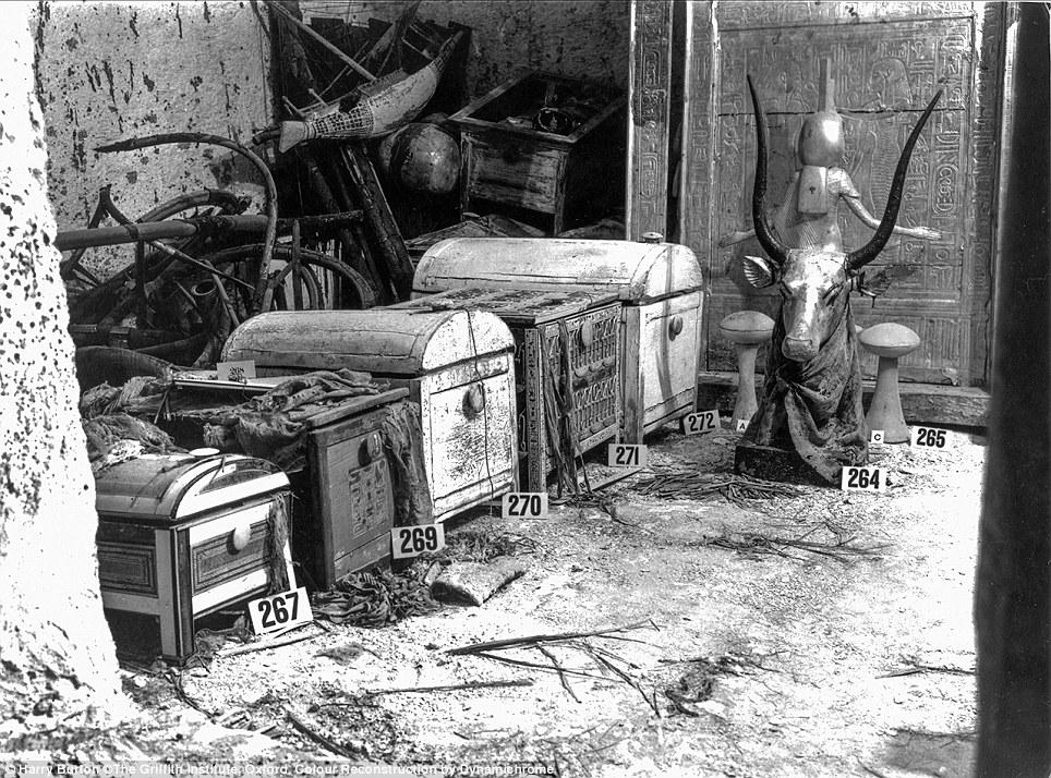"""صناديق عثر عليها مدفونة مع مومياء """"توت عنخ آمون"""""""