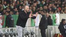 Algeria's head coach Djamel Belmadi gestures during the international friendly football match between Algeria and Colombia on October 15, 2019 at Pierre Mauroy stadium in Villeneuve d'Ascq, northern France. (Photo by FRANCOIS LO PRESTI / AFP) (Photo by FRANCOIS LO PRESTI/AFP via Getty Images)