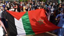 سياسة/تضامن مغربي مع فلسطين/(جلال مرشيدي/الأناضول)