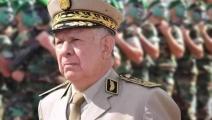قائد أركان الجيش الفريق سعيد شنقريحة