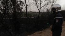 حرائق غامضة مدمرة في الجزائر (العربي الجديد)