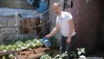 زراعة بيتية في مخيم عين الحلوة (العربي الجديد)