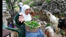 مونة بلدية لبنان (العربي الجديد)