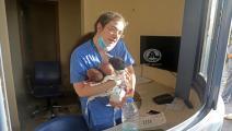 الممرضة باميلا زينون تحمل الرضع الثلاثة (بلال جاويش)