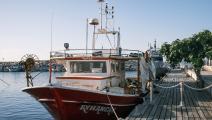 قارب مهاجرين وصل إلى قبرص سابقاً (أمير مكار/ فرانس برس)