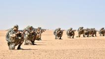 سياسية/الجيش الجزائري/(فايسبوك)
