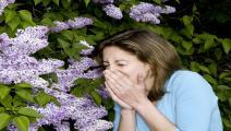 Junge Frau, Twen, niest neben einer Fleiderpflanze (Modellfreigabe) (Modellfreigabe) Junge Frau, Twen, niest neben einer Fleiderpflanze (Photo by allOver/ullstein bild via Getty Images)