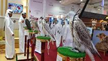 معرض سهيل للصقور (العربي الجديد)