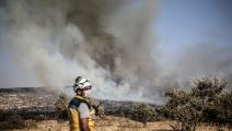 الحرائق التهمت الشجر المثمر (Getty)
