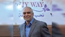 شركة ماي واي المصرية