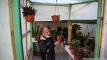 الزراعة المنزلية في غزة (عبد الحكيم أبو رياش/العربي الجديد)