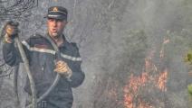 حرائق الجزائر (فيسبوك)