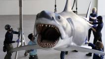مجسم لسمك القرش/ فيسبوك