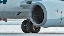 طائرة تصطدم بدب لدى هبوطها بمطار في ألاسكا- تويتر