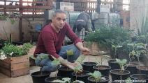 زراعة السطوح في مخيم برج البراجنة