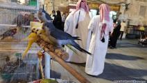 طيور سوق واقف- العربي الجديد