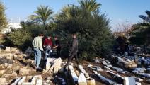 ترميم مقبرة الاستقلال الإسلامية في حيفا (العربي الجديد)