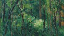 داخل الغابة