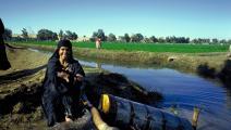 خسائر كبيرة للفلاحين بسبب شح مياه الري