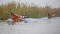 الأهوار العراقية (مرتضى السوداني/ الأناضول)