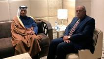 وزير الخارجية القطري ووزير الخارجية المصري (تويتر)