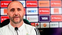 قبل مباريات التصفيات... بلماضي يستعين بخدمات نجم الدوري الجزائري