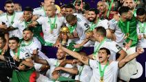 algeria 2019 can