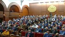 سياسة/مجلس الشيوخ المصري/(تويتر)
