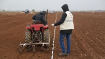 مشروع دعم محصول القمح في الشمال السوري (قطر الخيرية)