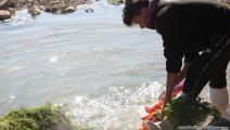 تلوث المياه في تونس (العربي الجديد)
