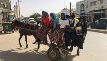 خمسة ملايين حمار في السنغال  (رؤوف مالتاس/ الأناضول)