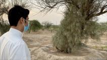 محمية النخيل في الكويت (العربي الجديد)