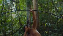 """""""الغابة الأخيرة"""" للويس بولونيزي: صراع من أجل الوجود (الملف الصحافي للفيلم)"""