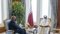 أمير قطر خلال استقباله سامح شكري/ تويتر