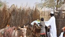 مساعدات لمتضرري النزاع المسلح في السودان (تويتر)