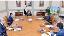 الرئيس المصري يتفقد مخون البلاد من السلع التموينية  (العربي الجديد)