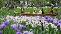 من حديقة النباتات في كاتوري، جنوب طوكيو (Getty)