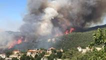 حرائق أحراج القبيات اللبنانية (الدفاع المدني)