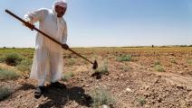 جفاف في العراق (أحمد الربيعي/ فرانس برس)