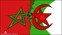 كاريكاتير الجزائر والمغرب / حجاج