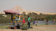 شم النسيم في عام 2018 في مصر - مجتمع