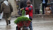 صبي يبيع بقدونس في شمال سورية - مجتمع