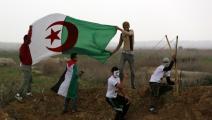 مواجهة مع قوات الاحتلال قرب-غزة - القسم الثقافي