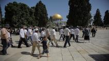 مستوطنون يهود يقتحمون باحة المسجد الأقصى (فايز أبو رميلي/الأناضول)