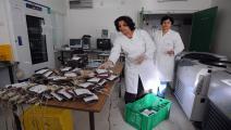 تونس/مستشفى (فرانس برس)