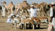 السودان-سياسة