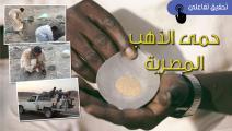 تحقيق حمى الذهب المصرية