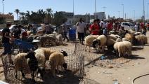 الأضاحي في ليبيا -اقتصاد-4-9-2016 (Getty)