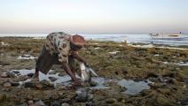 سقطرى اليمن جزيرة (Getty)